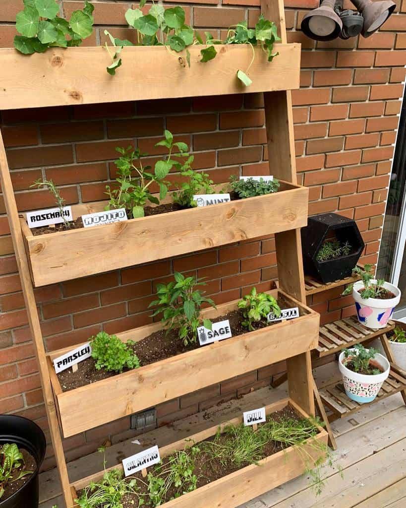 vertical garden herb garden ideas kenzie.conrad
