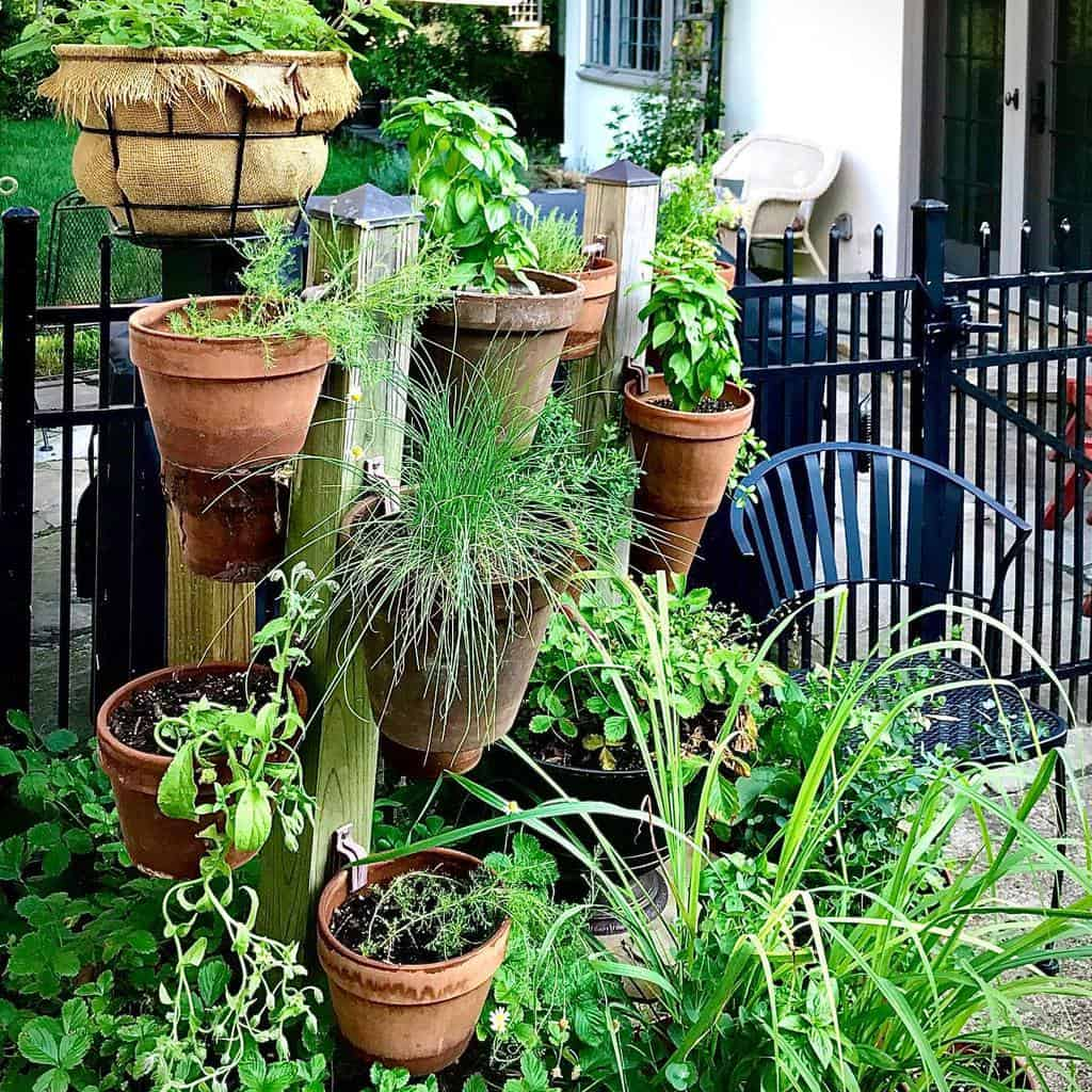 vertical garden herb garden ideas thecornerproperty