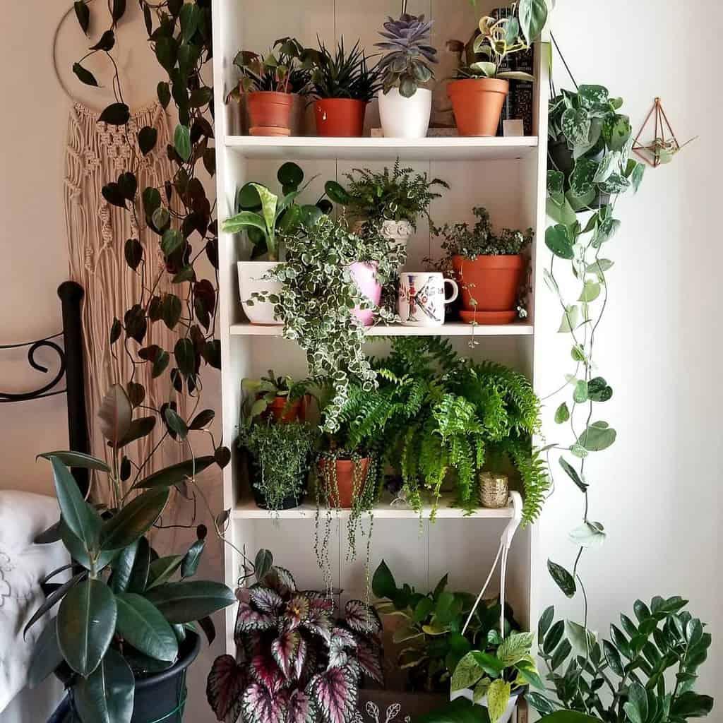 vertical indoor garden ideas aplantlady