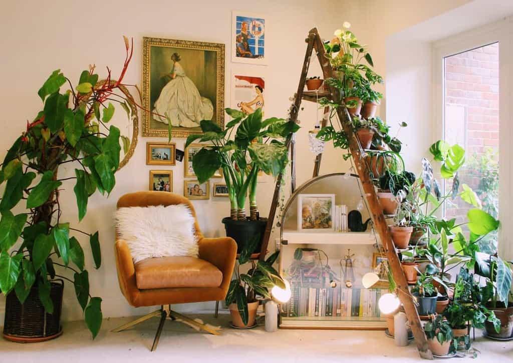vertical indoor garden ideas botanneical