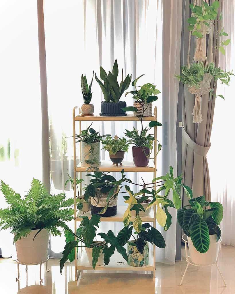 vertical indoor garden ideas ilovebeautifulplants88