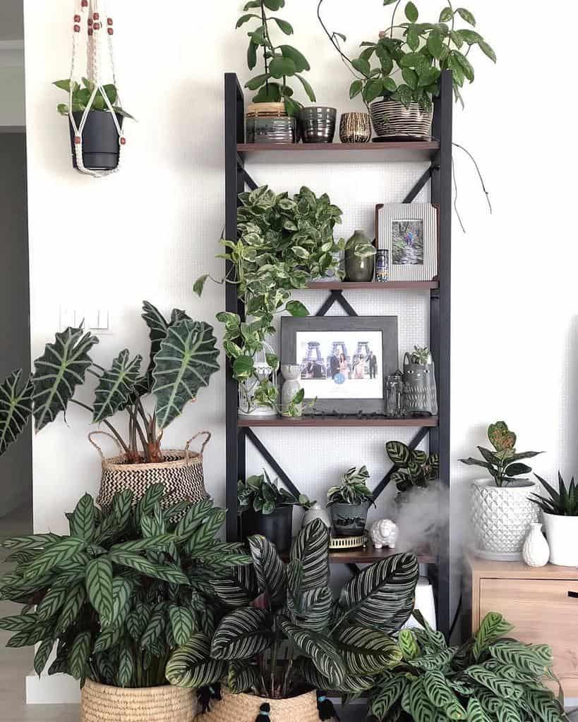 vertical indoor garden ideas jann.kus