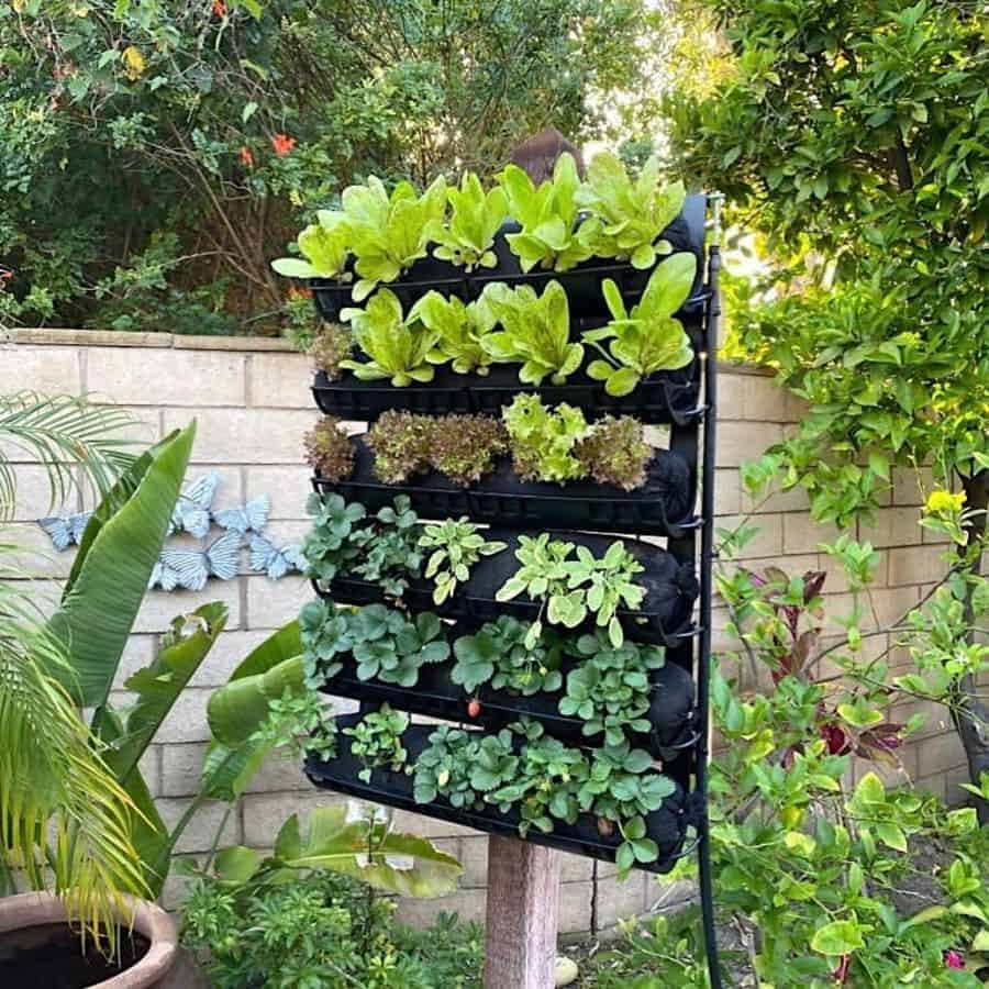 vertical planter garden ideas dlsherwood