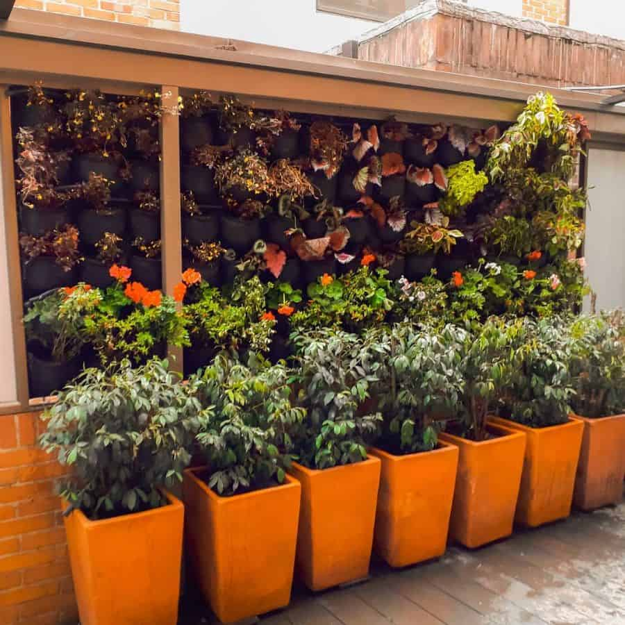 vertical planter garden ideas greengardenscol