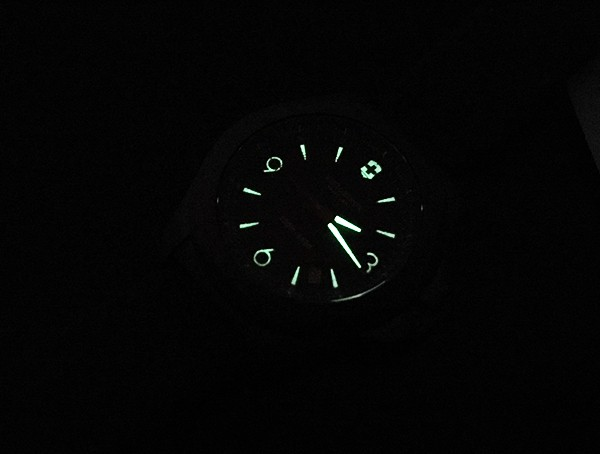 Victorinox Inox Watch Illumination Review