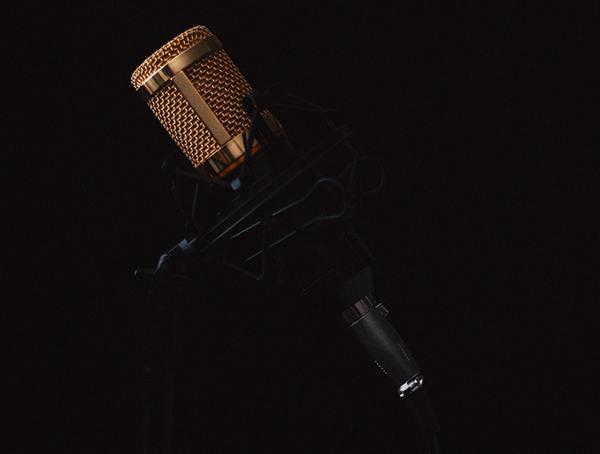 Voice Over Money Making Ideas