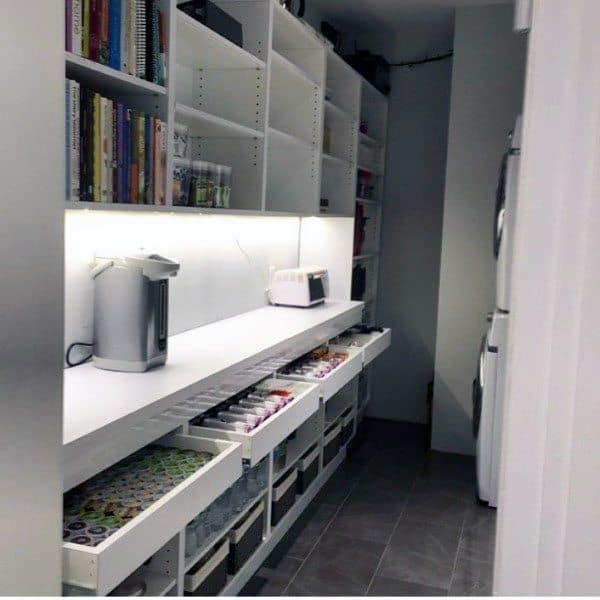 Walk In Kitchen Pantry Design Ideas