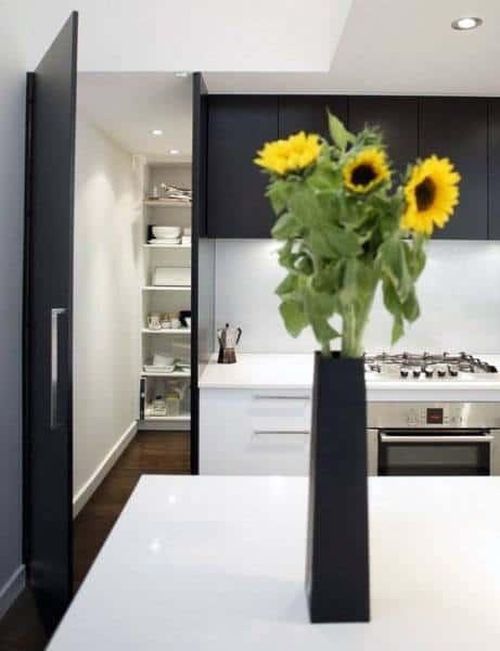Walk In Kitchen Pantry Ideas