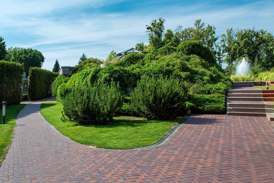 Backyard Cement Designs