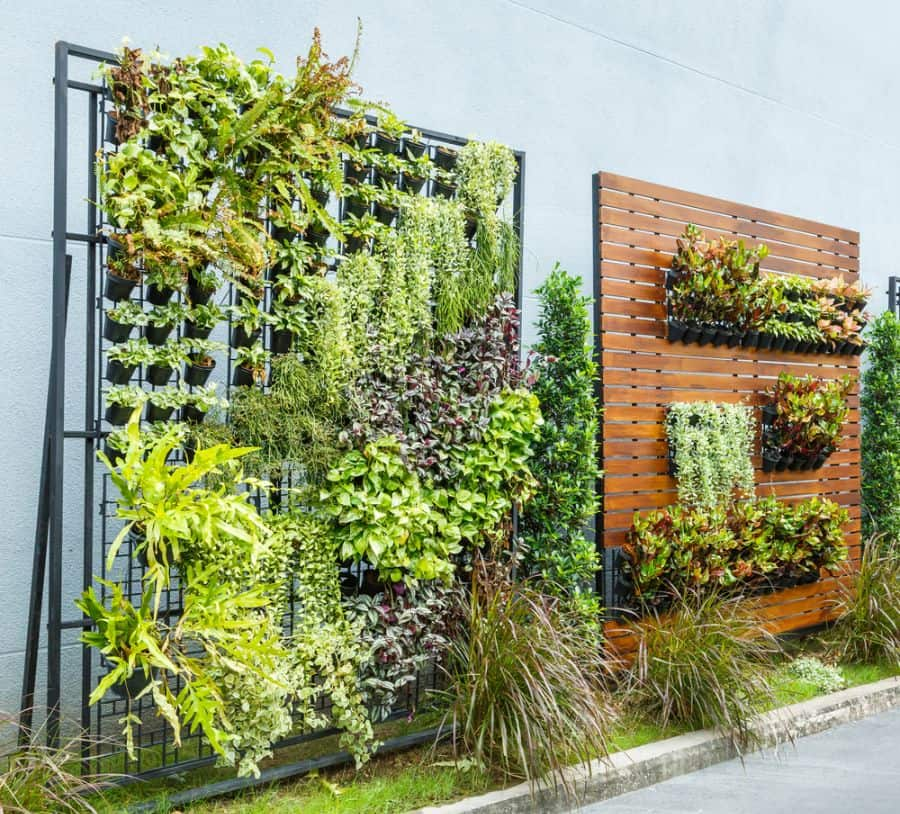 wall ideas for vertical garden 1