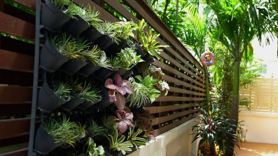 wall ideas for vertical garden 2