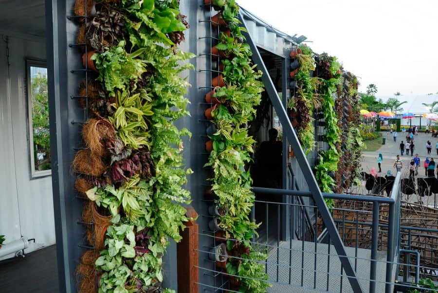 wall ideas for vertical garden 4