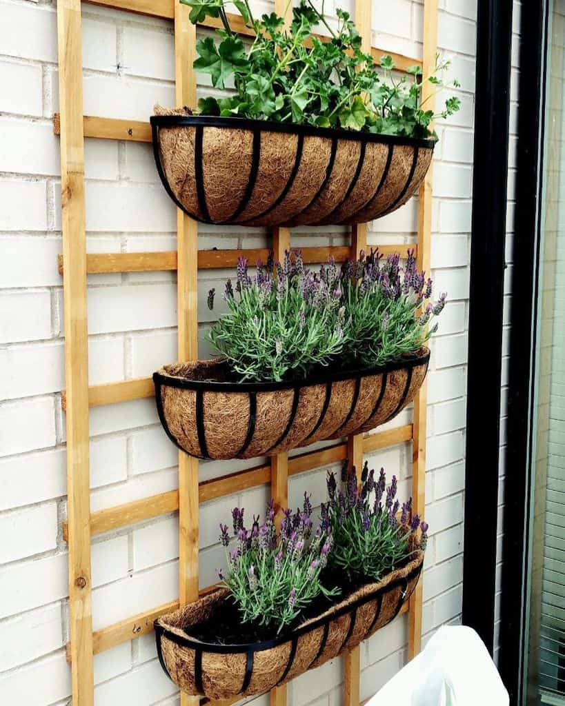 wall ideas for vertical garden anja_may_feelinggreen
