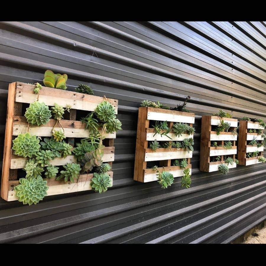 wall pallet garden ideas junglesisterplants