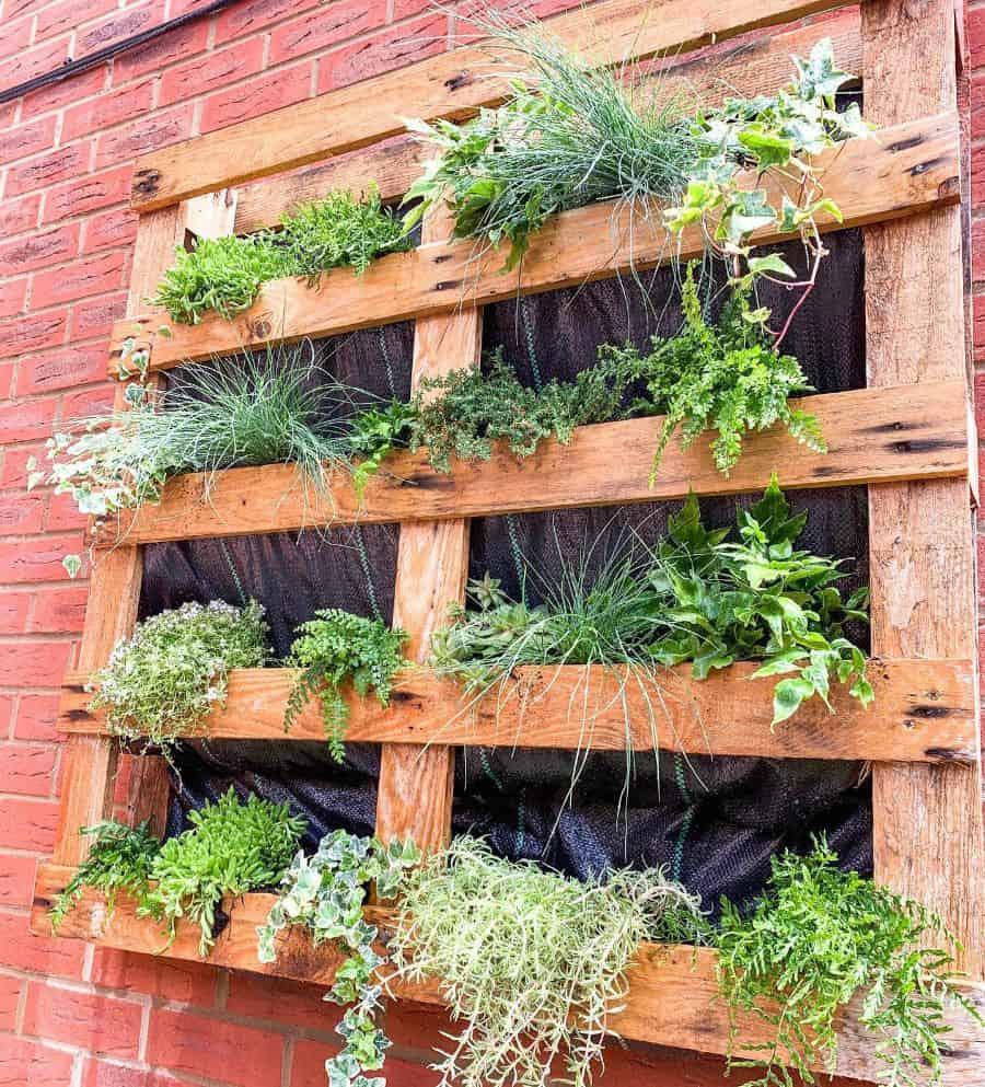 wall pallet garden ideas nosuchthinguk