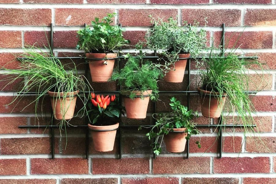 The Top 89 Herb Garden Ideas – Landscaping and Gardening Ideas