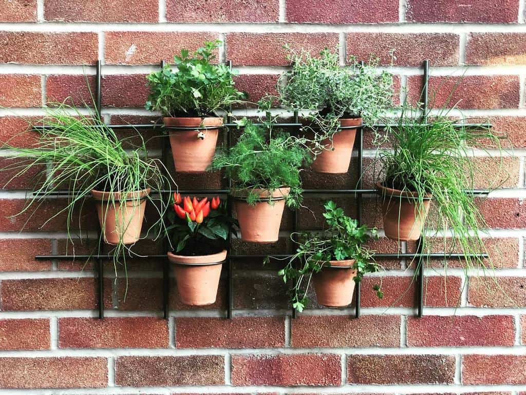 wall planter herb garden ideas abscroucher