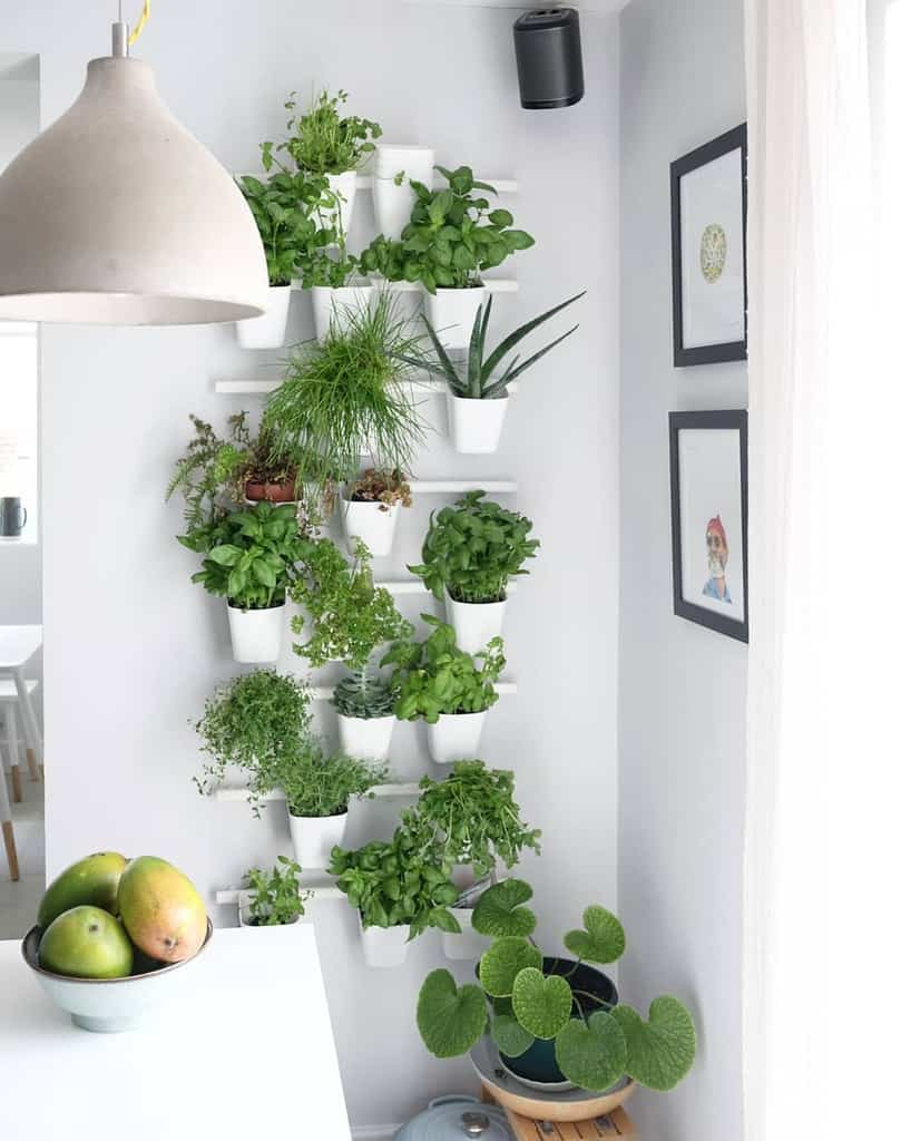 wall planter herb garden ideas ht_creative_