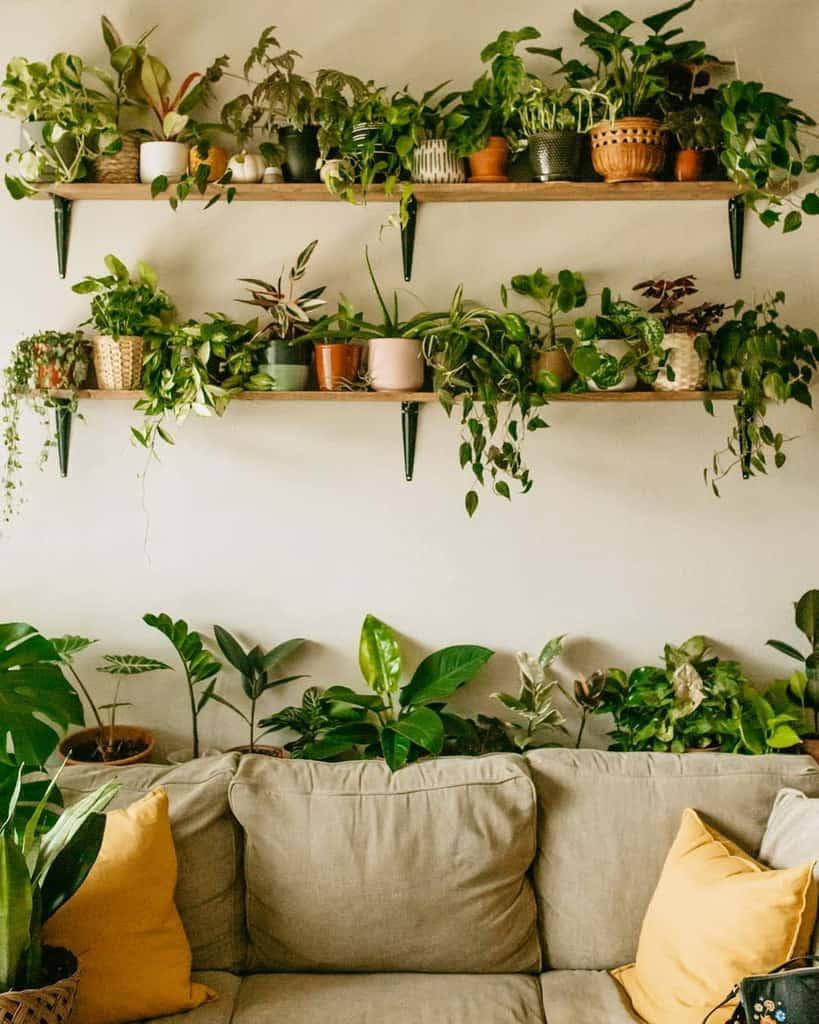 wall shelf and wall planter indoor garden ideas sydsjungle