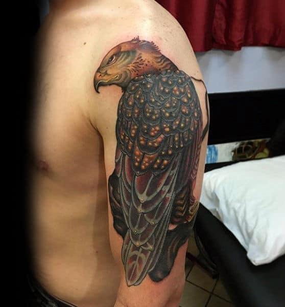 Watchful Hawk Upper Arm Tattoo On Gentleman