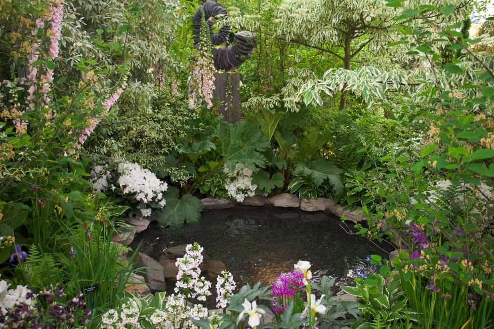 water feature shade garden ideas 1