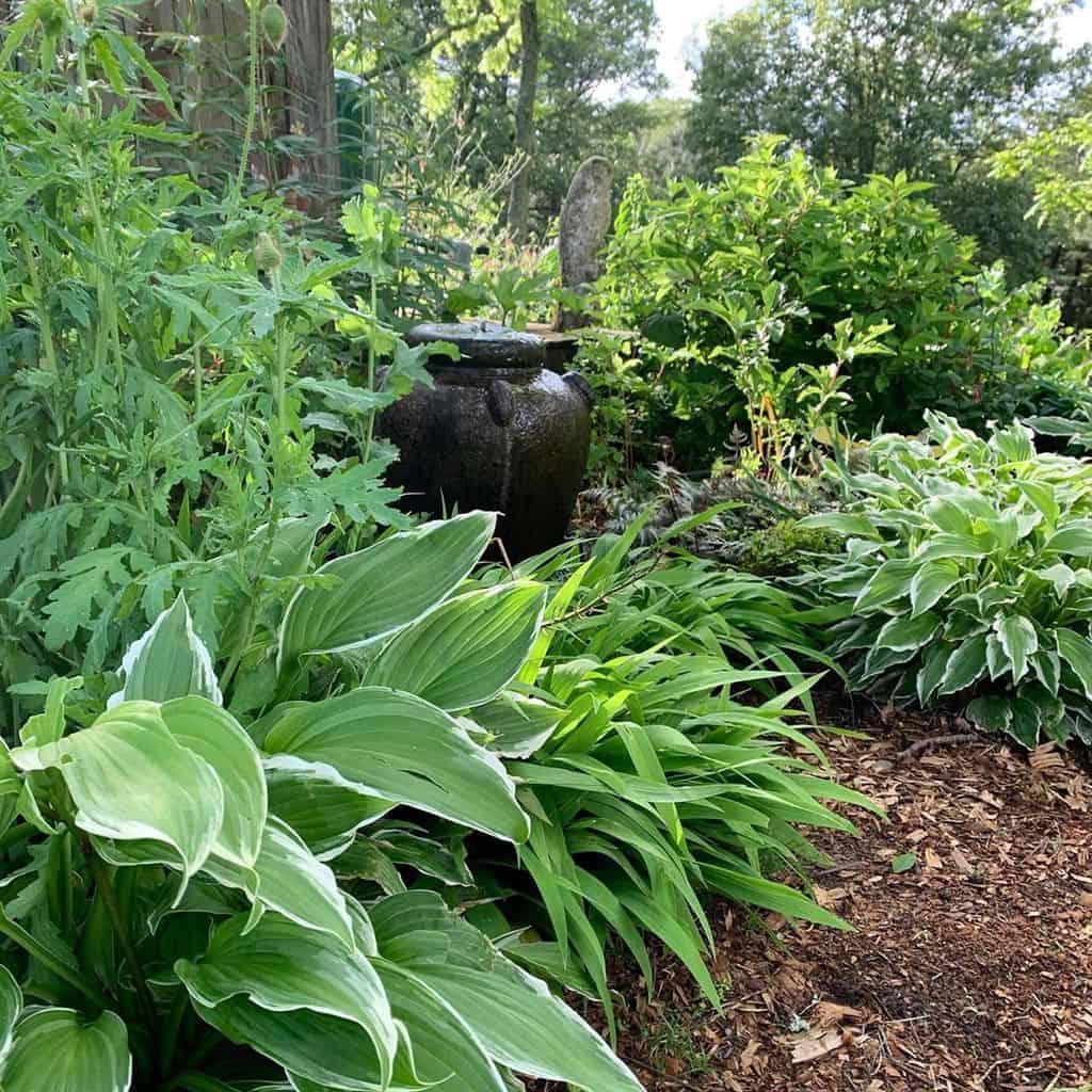 water feature shade garden ideas mountainlilyfarm