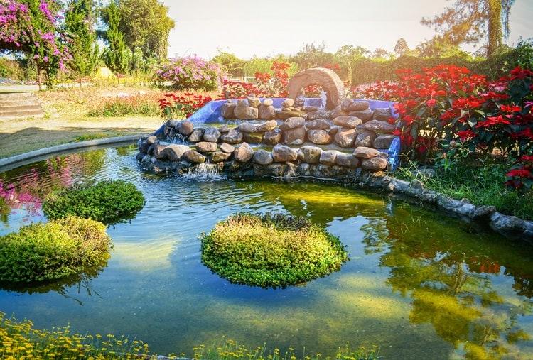 Water Garden Small Backyard Waterfall