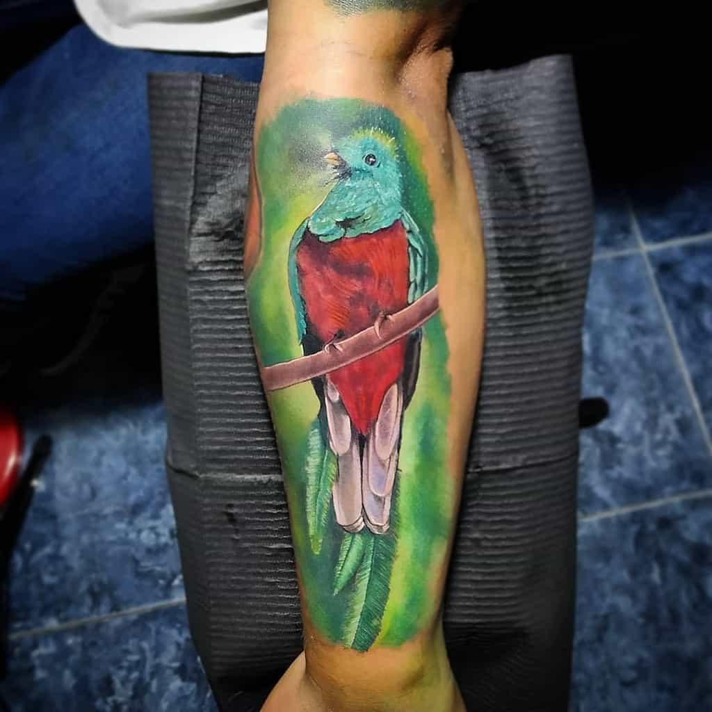 Watercolor Quetzal Tattoos Cesart Ink