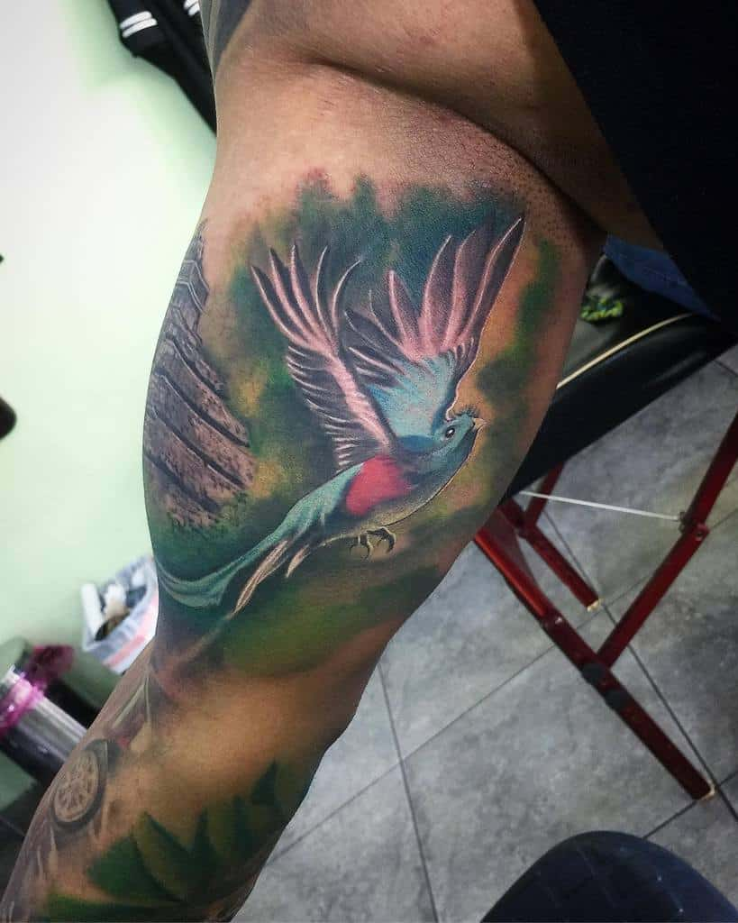 Watercolor Quetzal Tattoos Jean Vader Tattoos