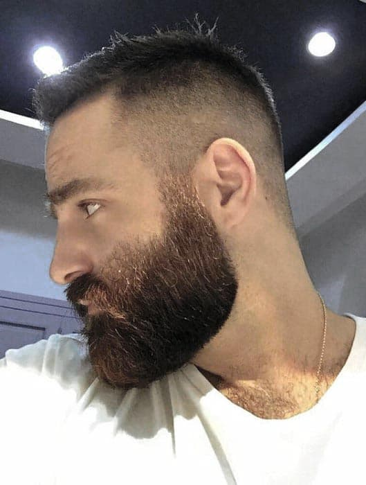 Well Groomed Beard With Short Hair Mens Styles