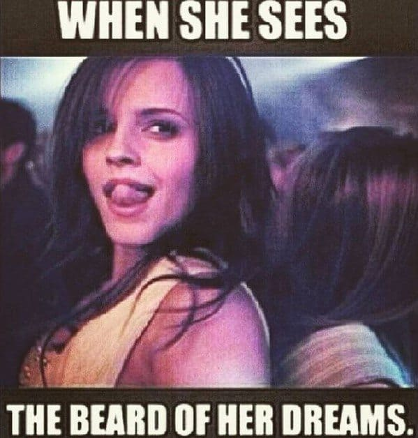 When She Sees The Beard Of Her Dreams Beard Memes