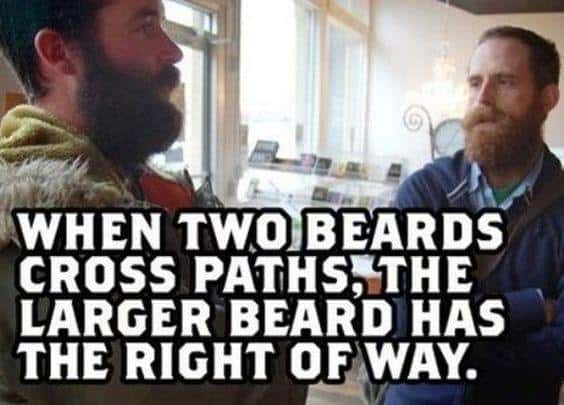 When Two Beards Cross Paths The Larger Beard Has The Right Of Way Meme