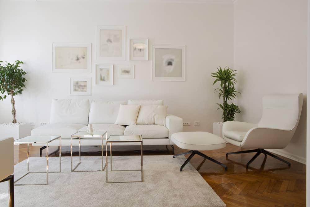 White Decor Pieces Minimalist Living Room 3