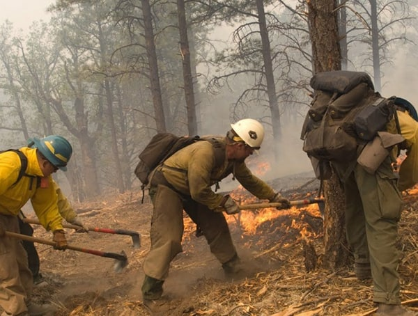 Wildland Firefighter Outdoor Jobs For Men