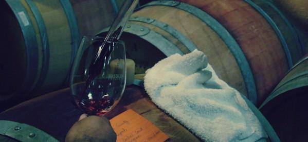 Wine Tasting Hobby