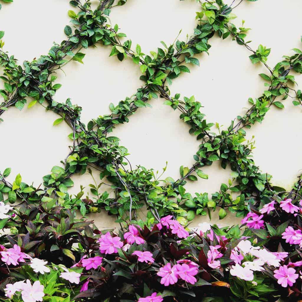 wire and wiremesh garden trellis ideas insitestudiodesign
