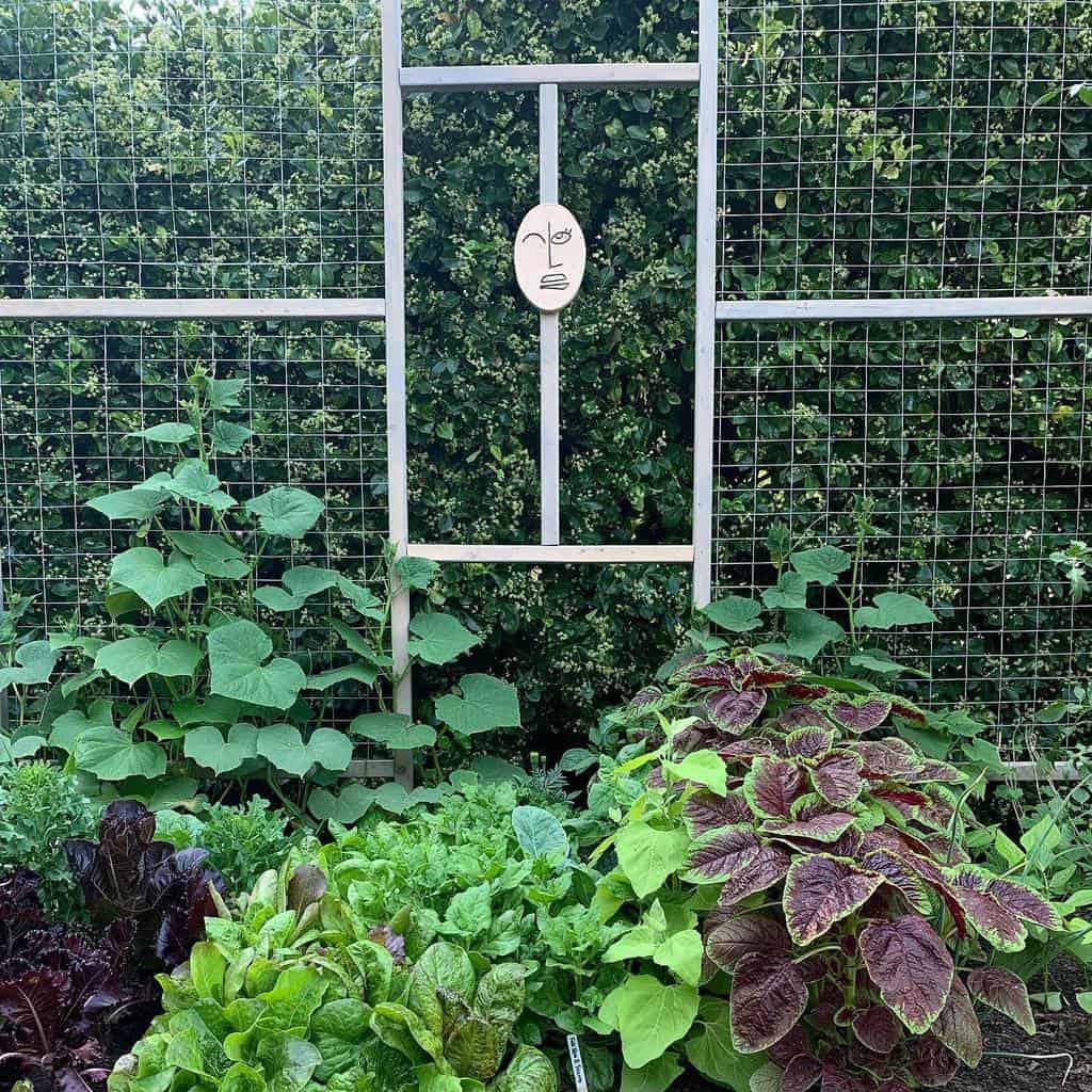 wire and wiremesh garden trellis ideas loujatras
