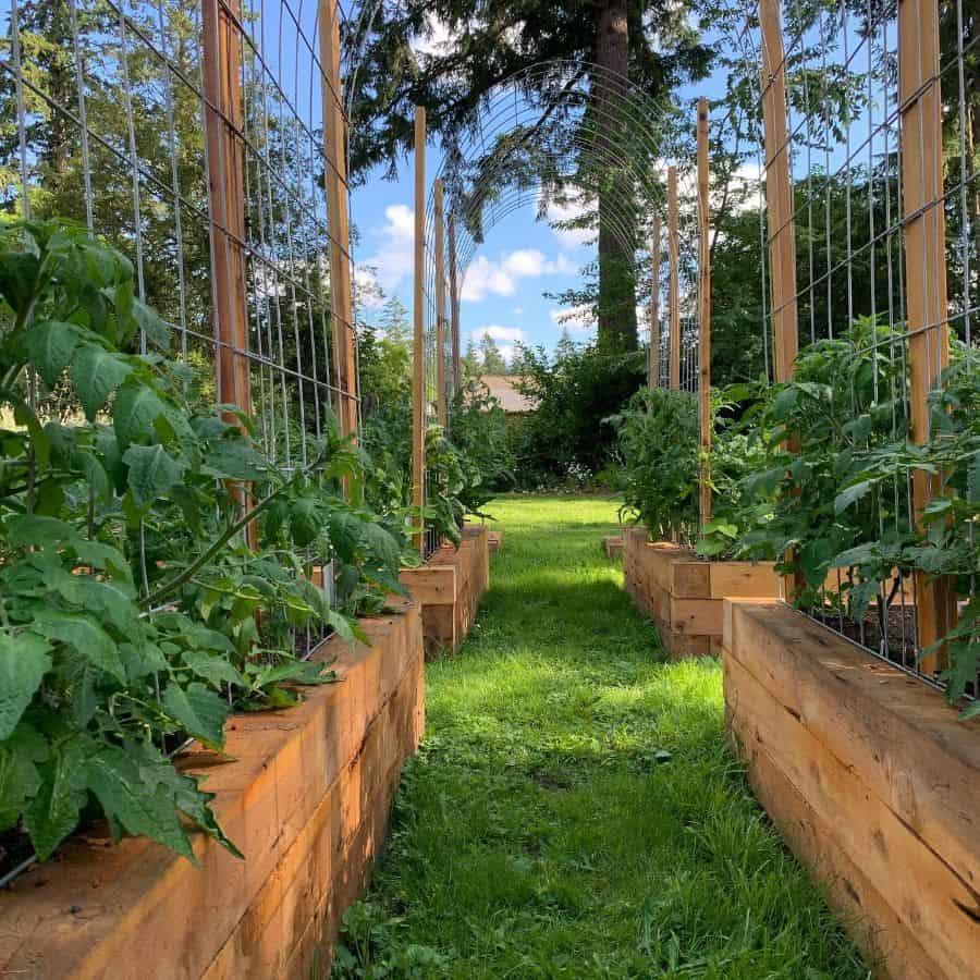 with trellis raised garden bed ideas trinitystreetgarden
