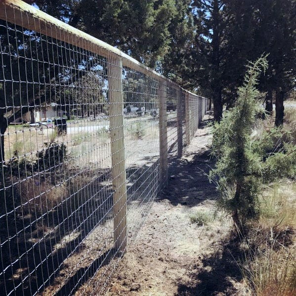 Wood Steel Mesh Ideas For Dog Fence Exterior