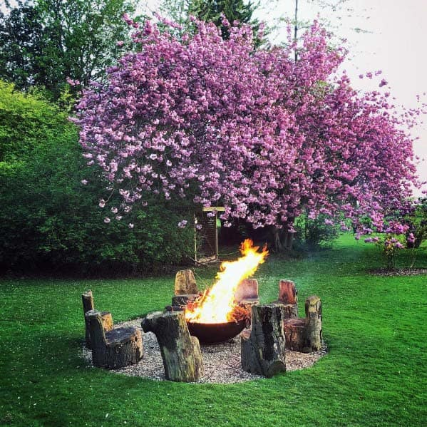 Wood Stumps Fire Pit Landscaping Design Ideas