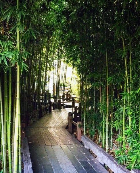 Wooden Walkway Design Ideas