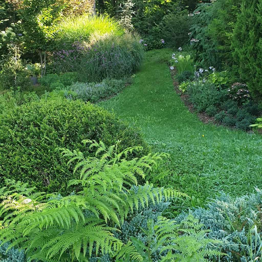 woodland garden shade garden ideas omniaetnihilbeautiful