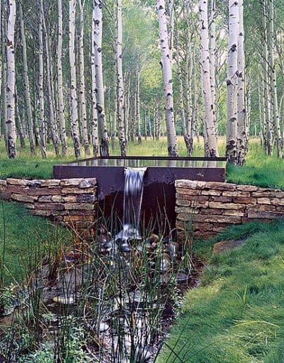 Yard Pond Ideas